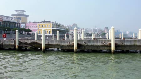 fishermen : A peaceful view of empty mooring posts at Macau Fishermans Wharf Stock Footage