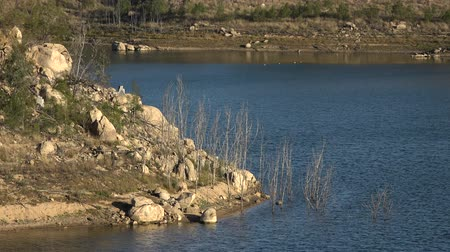 regionaal : Lake Perseverance in Crows Nest, Regional Toowoomba, Queensland overdag.