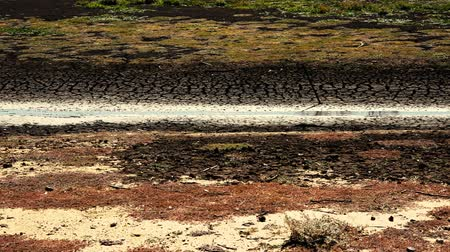 csúcs : Very dry Lake Apex in Gatton, Lockyer Valley Region, Queensland after no rain for a long time.