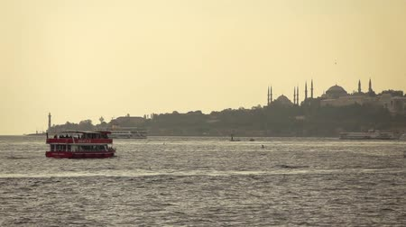 view of the city of Istanbul sea, ships and seagulls