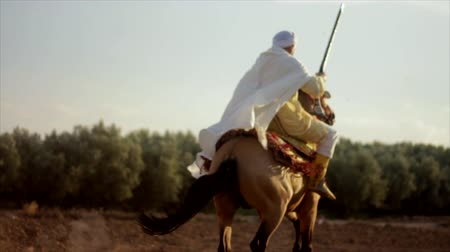 farpa : Amazigh warrior riding horse Stock Footage