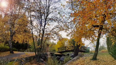 Autumn footpath in the city park with a bridge on a suny day. Light breeze.
