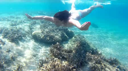 Мальдивы : Young woman diving in beautiful blue sea, Diving in the exotic seas Video clip