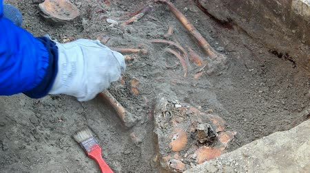 on site research : Archaeologists explore the huge tomb from the mid-18th century, Video clip
