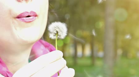 üfleme : The young woman  blowing dandelion in the park as a parallel recording, Slow Motion Video clip Stok Video