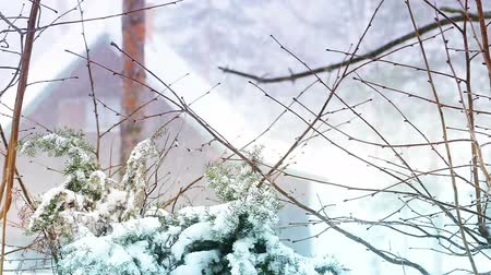 idil : Winter landscape on the mountain in slow motion, Slow Motion Video Clip Stok Video