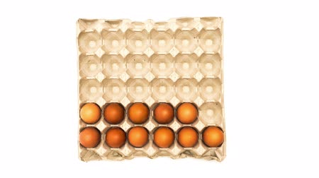 dozen : egg carton filled with eggs Stock Footage