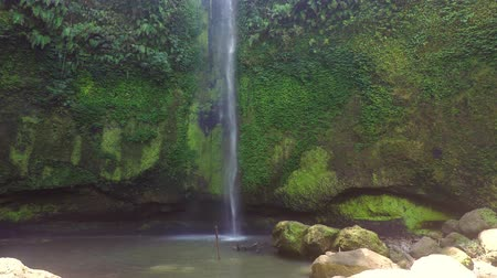 akvarell : Small and beautifull waterfall in Tomohon Sulawesi Selatan, Manado, Indonesia Stock mozgókép