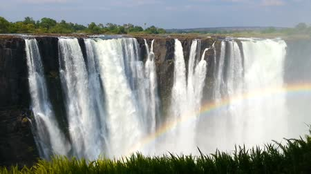 Виктория : Zambezi River, Victoria Falls, largest to the curtain of water in the world. Heritage Site - Zambia, Zimbabwe, Africa Wilderness landscape Стоковые видеозаписи