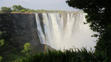 Виктория : Zambezi river, Victoria falls, one of the largest waterfall in the world. Heritage Site - Zambia, Zimbabwe, Africa wilderness landscape Стоковые видеозаписи