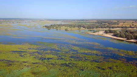 Намибия : Aerial landscape in Okavango delta on Namibia and Angola border. River with shore and green vegetation after rainy season.