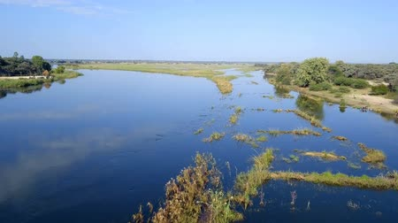 Aerial landscape in Okavango delta on Namibia and Angola border near Rundu. River with shore and green vegetation after rainy season. Стоковые видеозаписи