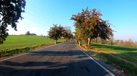 průhled : car drive in autumn landscape with sunny day. Countryside road. Fall concept