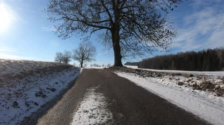 тапочка : Car driving through the countryside in winter season, sunny day and landscape covered by snow, protune