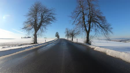 terlik : Car driving through the countryside in winter season, sunny day and landscape covered by snow, flat protune colors Stok Video