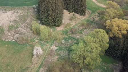 přirozeně : birds eye view of a small valley, spring landscape with blossoming trees, europe springtime, green landscape