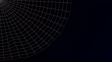 white out : Abstract background - spiders web on black and dark blue background. Loopable. Luma matte. 3D rendering. Stock Footage
