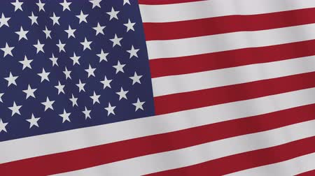 USA flag. American flag waving in the wind. Loopable. 3D rendering. Vídeos