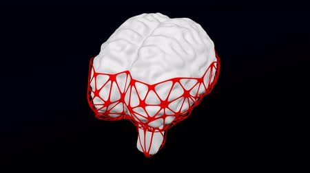Concept: Internet addiction disorder. Human brain in the net turn around. Loopable Luma matte. 3D rendering.
