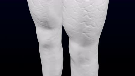 колено : 3d womans legs gaining weight and lose weight. Loopable Luma matte. 3D rendering.