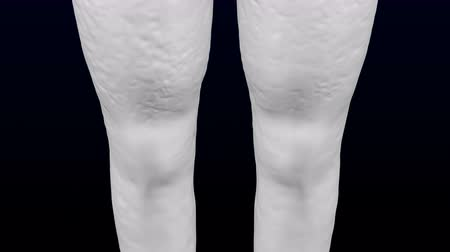 3d womans legs gaining weight and lose weight. Loopable Luma matte. 3D rendering.