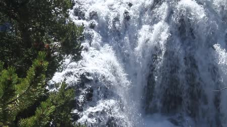 cobra : Waterfalls in yellowstone Vídeos