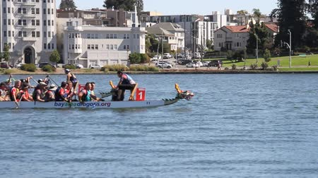 Dragon boat races, Oakland, Sep 2017 Wideo