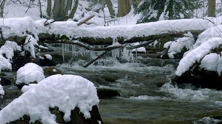 nezkažený : A beautiful crystal clear stream in winter with snow flows through woods, Bistriski Vintgar, Slovenia