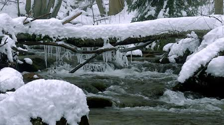 нетронутый : A beautiful crystal clear stream in winter with snow flows through woods, Bistriski Vintgar, Slovenia