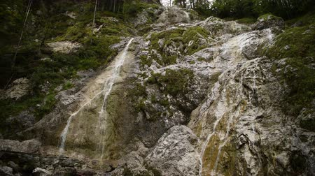 beatiful : Palenk waterfall in Logarska valley, Slovenia, alpine creek cascading over rocks.