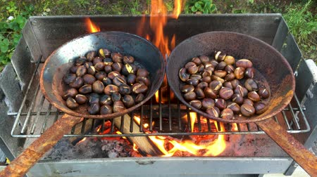 гайка : Chestnuts roasted on open fire, seasonal delicacy, harvest Стоковые видеозаписи