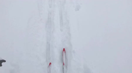 snow flurry : Woman in cross-country skiing. Hiking on a snowy day. Stock Footage