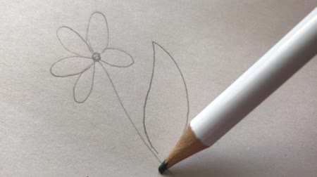 Artists draw a wooden pencil, draw a flower on paper. Stock mozgókép