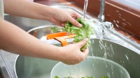 drenar : 4K footage. woman holding and draining water out of fresh lettuce , washing vegetable from sink at counter kitchen for prepare ingredients for cooking Stock Footage
