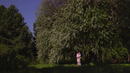 рекреационных преследования : Lovely couple costs under trees and embrace. In the blossoming garden beautiful couple walks