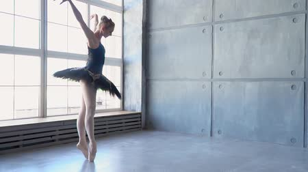 stardust : The girl the ballerina dances before a panoramic window. The beautiful refined girl the ballerina moves in front of the camera. The beautiful refined girl the ballerina moves in front of the camera