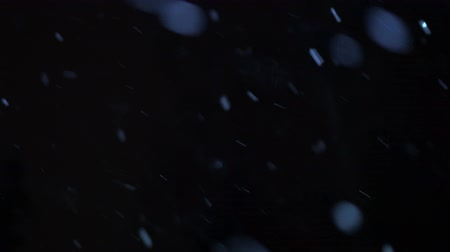 fresh air : Snow flickers, is turned on wind. Large snowflakes against the background of the black sky. Stock Footage