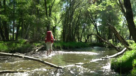 wet t shirt : The woman the traveler with a backpack and sticks for tracking passes a mountain stream.