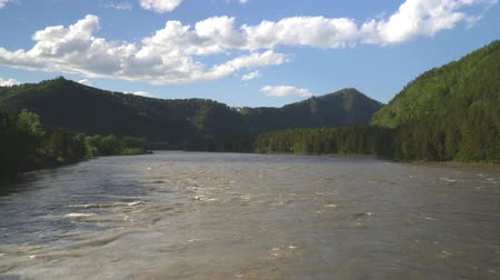 чаща : Slow-motion shot. Beautiful mountain river. Close up. Стоковые видеозаписи