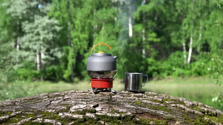 wet t shirt : On the gas burner there is a teapot. View of the wood and lake.