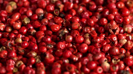 bezelye : Pink peppercorns placed on a kitchen table.Extreme macro of a Himalayan pepper berries.concept of fresh and dietary spices for cooking schools and vegans and dietary products.Вращение. Stok Video