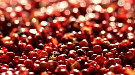 fragrância : Pink pepper peas. Close up.The movement in a shot.