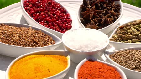 kardámom : Spices. Various Indian. Spice and herbs rotate. Assortment of Seasonings, condiments. Cooking ingredients, flavor. 4K video.
