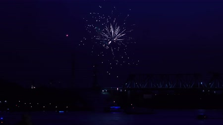 Dazzling fireworks are radiating the night skyline. Stock mozgókép