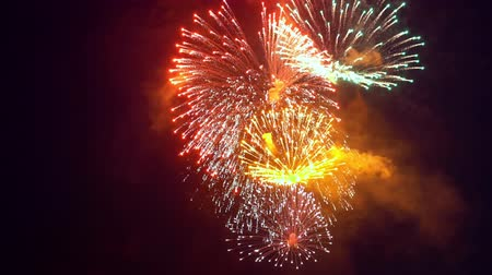 Dazzling fireworks are radiating the night skyline. Stock Footage