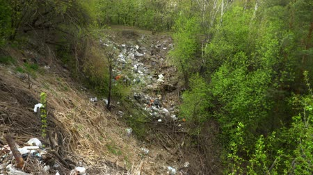 çevre kirliliği : 4K. A trash dump spot in the nature of wood