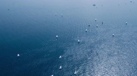associados : Lot of sailing yachts sail open sea oceans. Sport navigation regatta competition. Freedom extreme tour. Associated wind blue water horizon. Aerial Drone Top