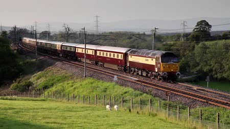 pictured : The rail tour Northern Belle is pictured on the west coast mainline heading south through Hackthorpe, Cumbria.  The mainline links London to Scotland, Stock Footage