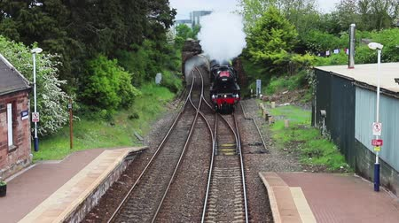 ekspres : A steam train heads The Lakelander through Brampton Station in Cumbria, Northern England.