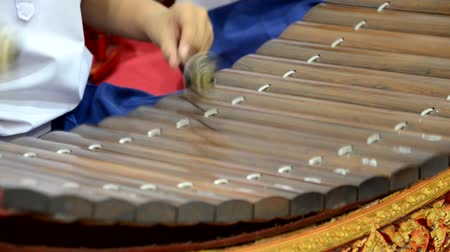 playing band : Playing Thai xylophone in the local celebration Stock Footage
